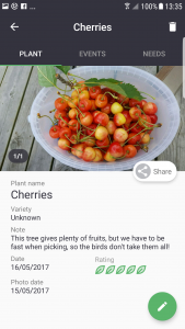 Gardenize Cherries