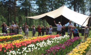 norrlands tulpanfestival