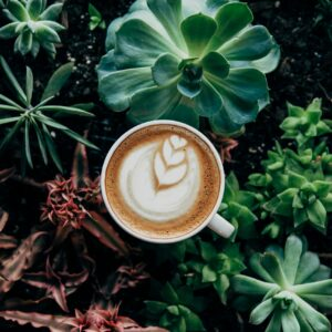 coffee-with-garden
